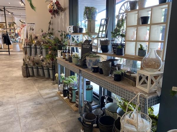 植物コーナーの写真